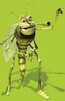 Zmora nocnych wêdkarzy - komary